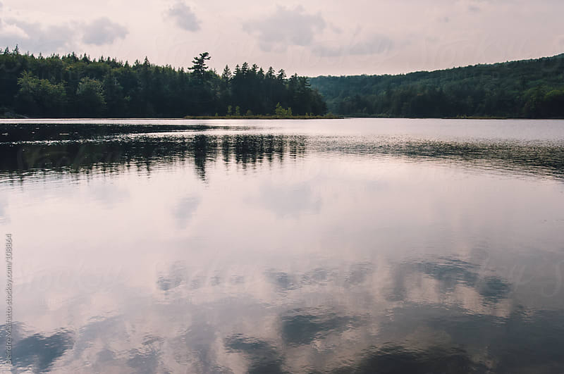 reflections of clouds and trees on a lake by Deirdre Malfatto for Stocksy United