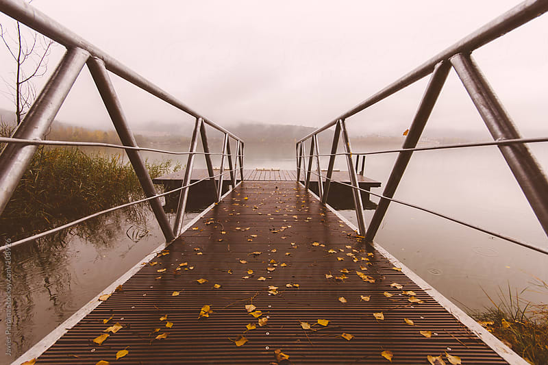 leaves of autumn on the pier by Javier Pardina for Stocksy United