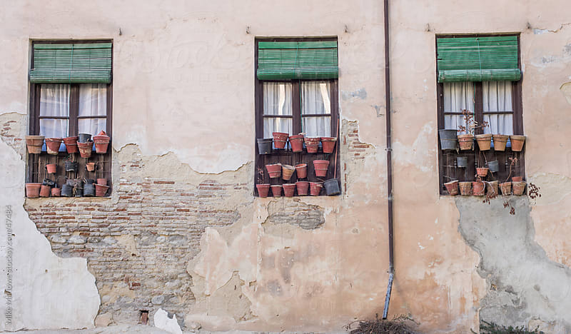 Three windows with pots in an old wall. by Mike Marlowe for Stocksy United