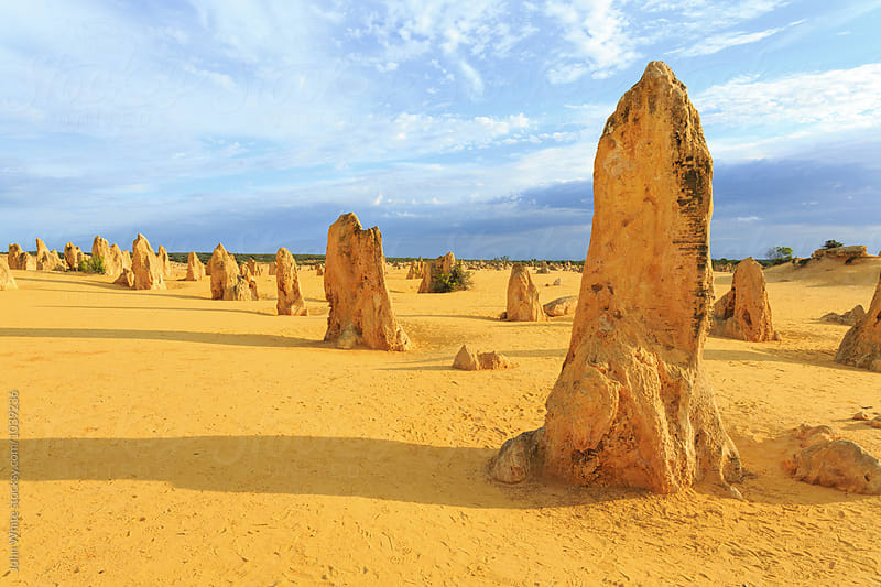 The Pinnacles. Western Australia. by John White for Stocksy United
