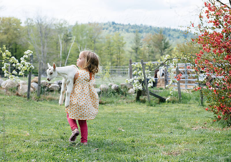 Little farm girl carries her pet goat across the yard by Cara Dolan for Stocksy United