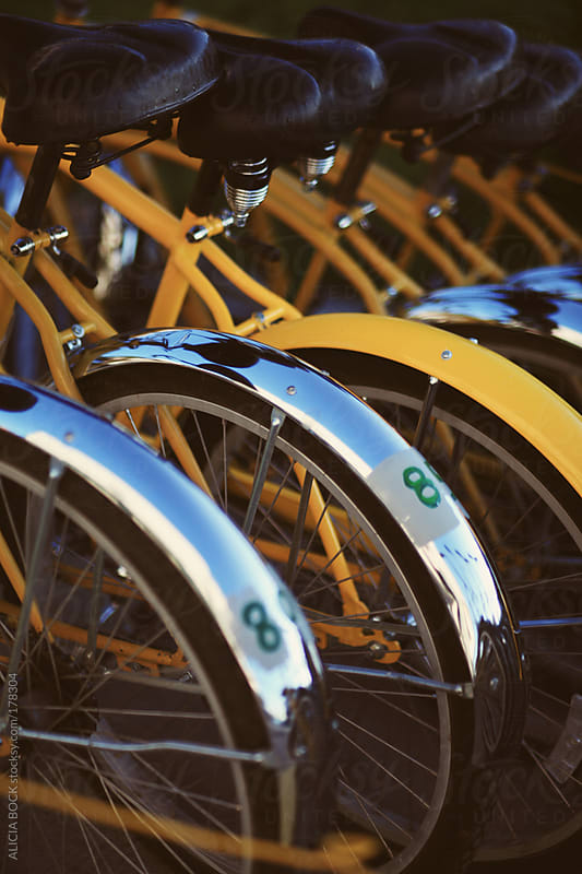 Yellow Bicycles  by ALICIA BOCK for Stocksy United