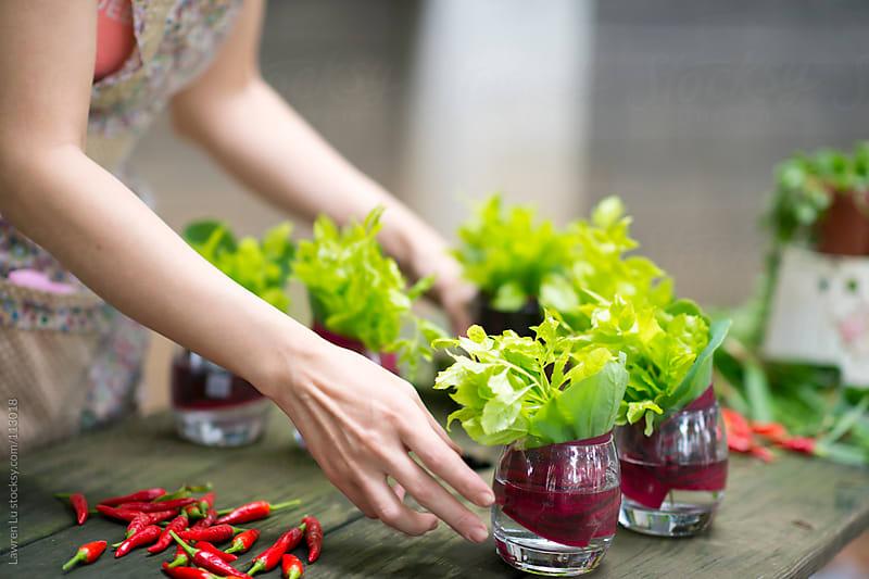 Woman cutting plants for flower arrangement decoration by Lawren Lu for Stocksy United
