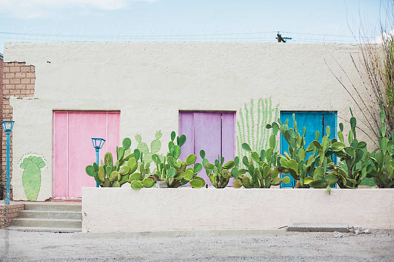 House with pastel colored doors and cactus by Image Supply Co for Stocksy United