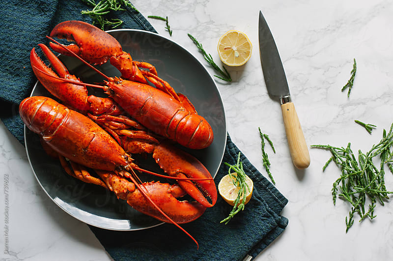 Two cooked lobsters on a grey plate on a table with a knife and lemon cuts. by Darren Muir for Stocksy United