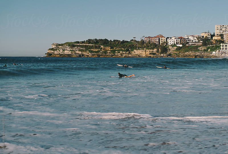 Early Morning Surf, Bondi Beach by WAA for Stocksy United