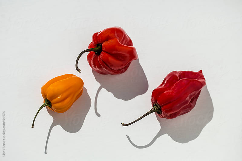 Three habanero chilies with strong shadow on white surface by Lior + Lone for Stocksy United