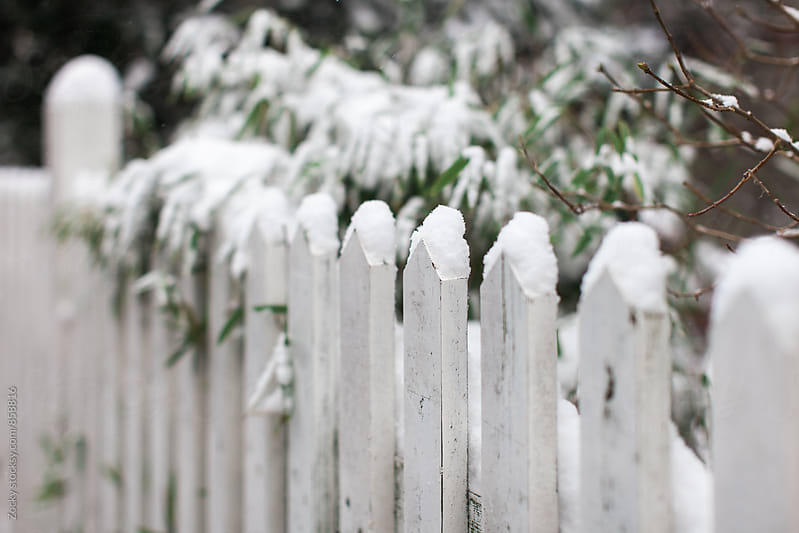 Snowy fence by Zocky for Stocksy United