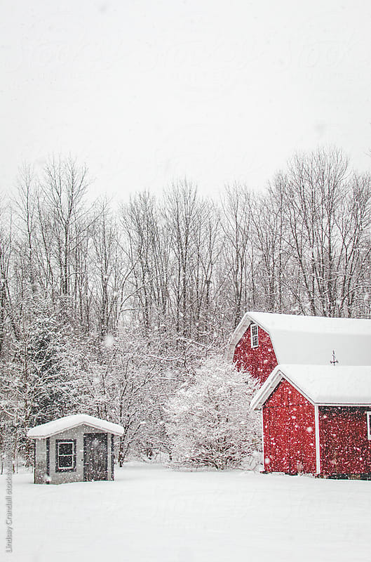 Abandoned red barn and small shack on a snowy day by Lindsay Crandall for Stocksy United