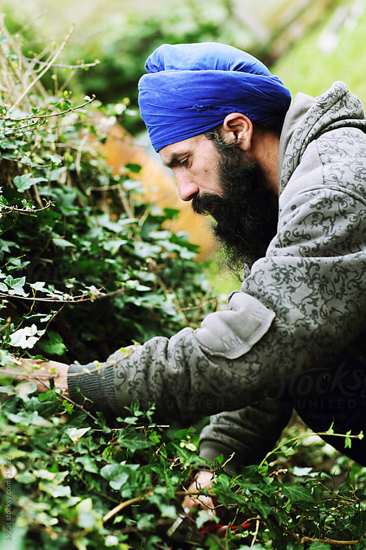 Sikh gardener. by kkgas for Stocksy United