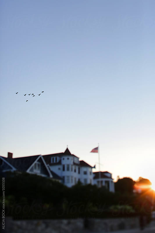 Sunrise Over Victorian Cottages On Mackinac Island Michgan With Geese Overhead by ALICIA BOCK for Stocksy United