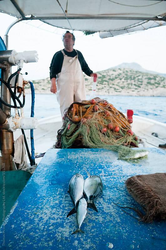 Commercial fisherman, Fourni Islands, Aegean Sea, Greece. by Thomas Pickard for Stocksy United