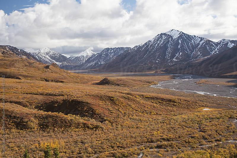 The Alaskan Wilderness by Maximilian Guy McNair MacEwan for Stocksy United