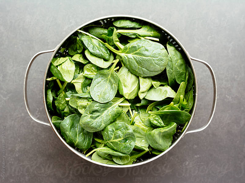 Fresh spinach by Harald Walker for Stocksy United