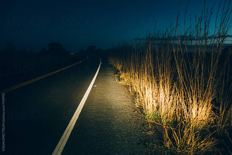 Car Lights Illuminating High Grass Growing Roadside by VISUALSPECTRUM for Stocksy United
