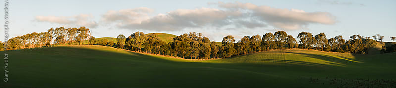 Undulating Hills near Yea, Australia by Gary Radler Photography for Stocksy United