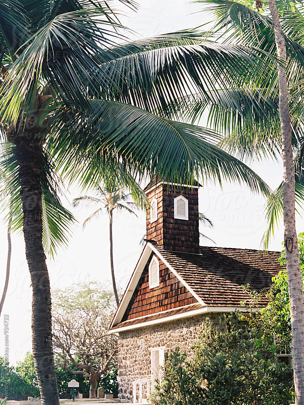 little stone church amidst palm trees by wendy laurel for Stocksy United