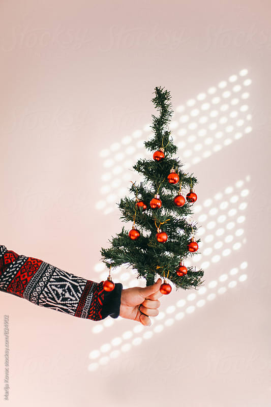 Male hand holding a christmas tree - vertical by Marija Kovac for Stocksy United