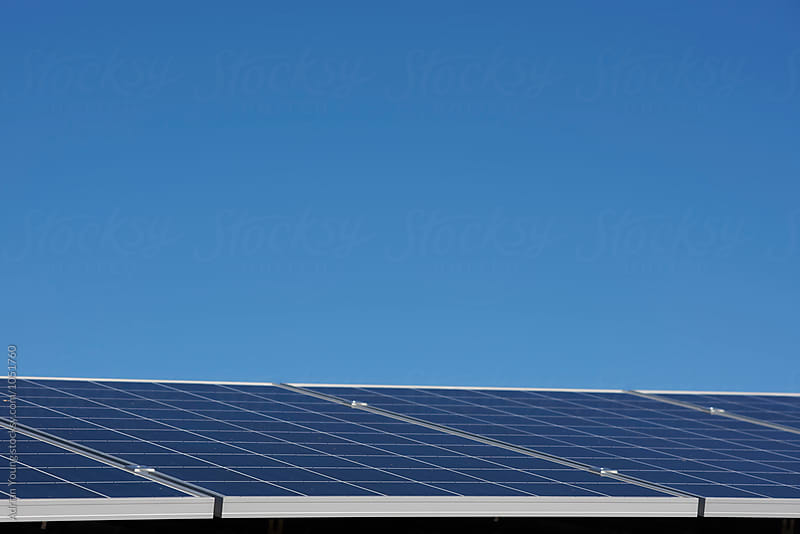 Solar Panels Against Blue Sky by Adrian Young for Stocksy United