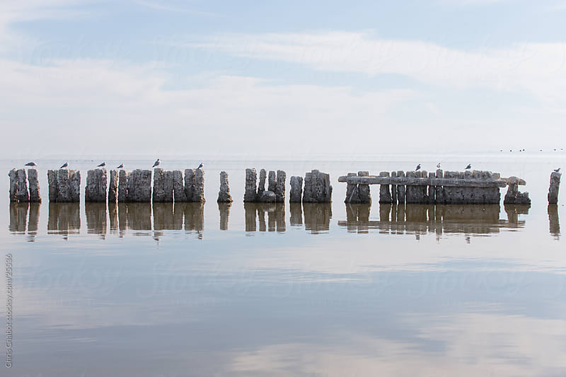 A decayed old pier reflected in the Salton Sea by Chris Chabot for Stocksy United
