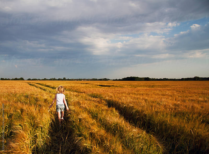 A little girl walking through a field of barley by Helen Rushbrook for Stocksy United