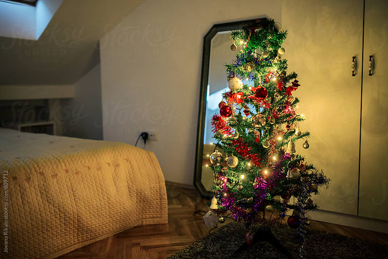 Christmas tree in an empty room by Jovana Rikalo for Stocksy United