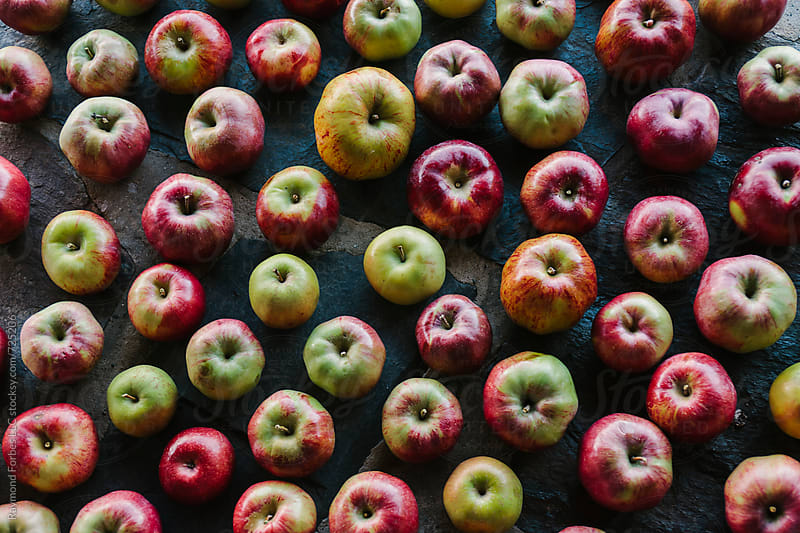Apples by Raymond Forbes LLC for Stocksy United