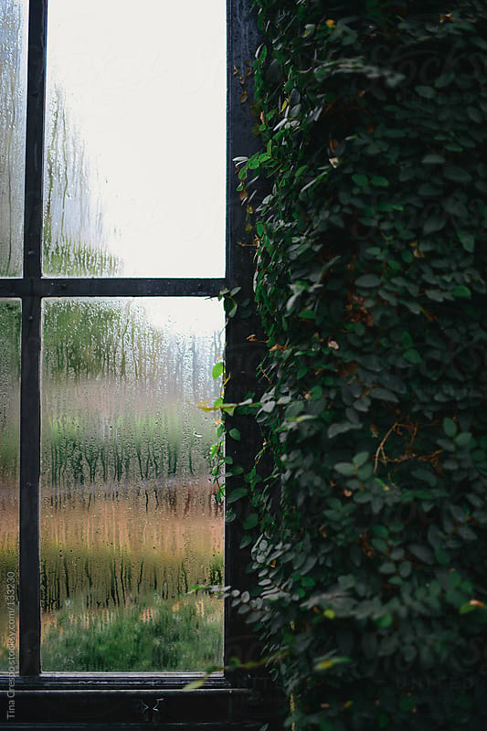 Steamed Window by Tina Crespo for Stocksy United