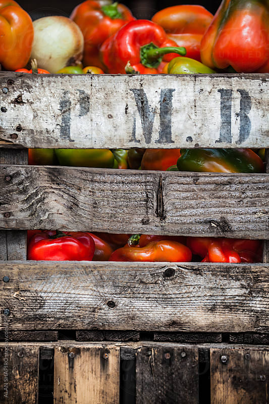 peppers in a farm crate by alan shapiro for Stocksy United