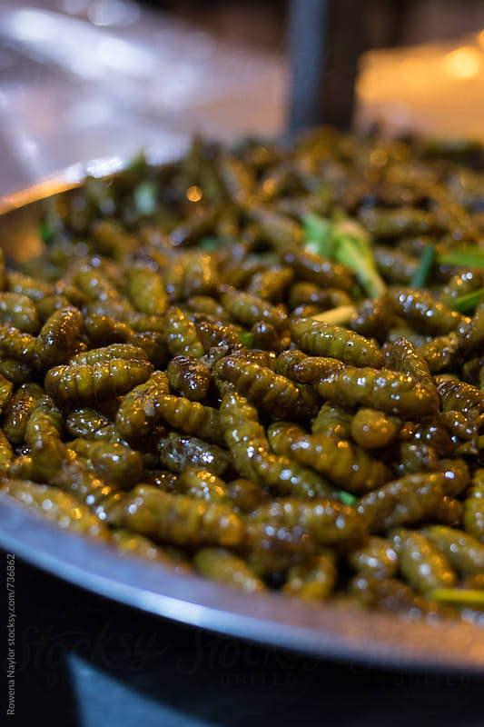 Edible bugs and insects at a night market in Cambodia by Rowena Naylor for Stocksy United