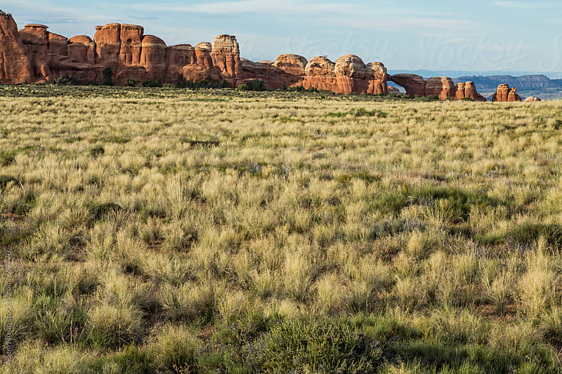 Grassland and rock formations, Arches National Park Utah by Adam Nixon for Stocksy United