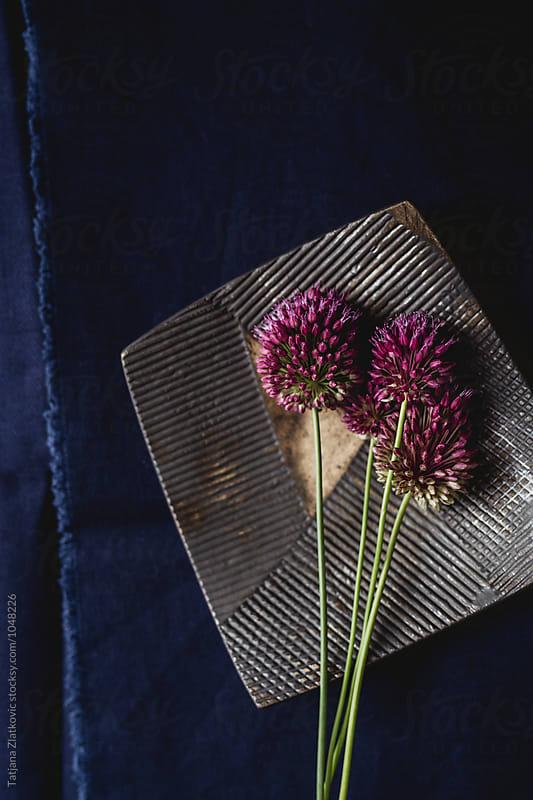 Flowers by Tatjana Zlatkovic for Stocksy United