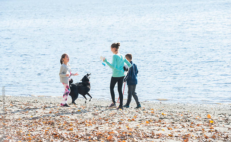 Kids and Dogs At Beach by Ronnie Comeau for Stocksy United