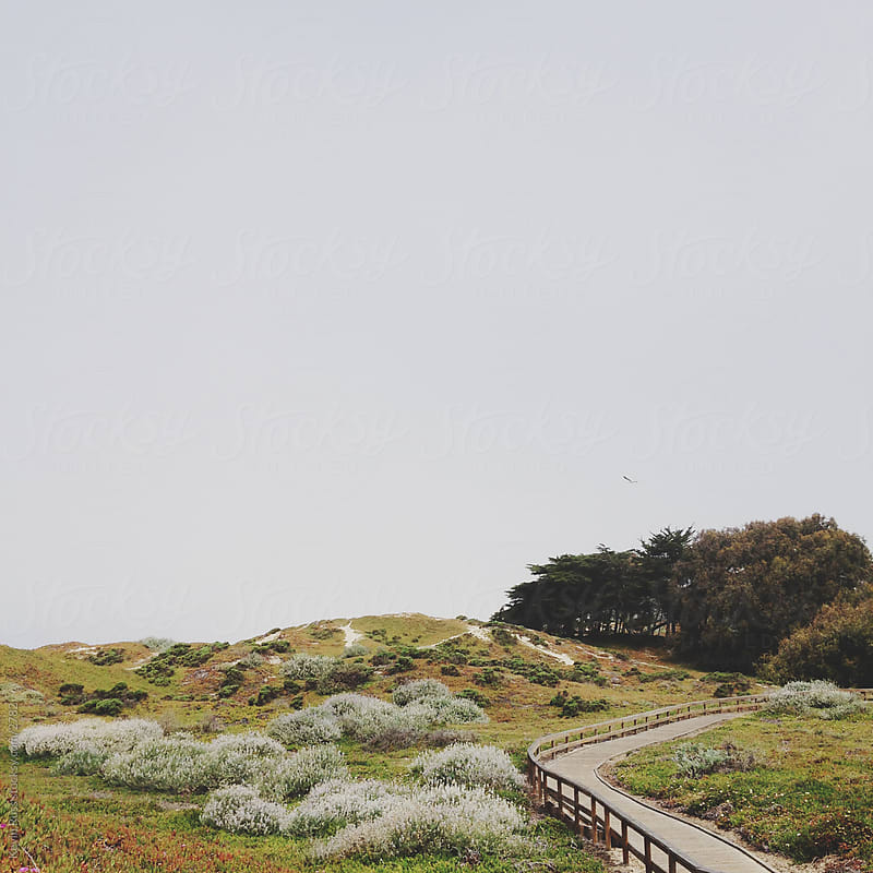 Overcast Coastal Path by Kevin Russ for Stocksy United