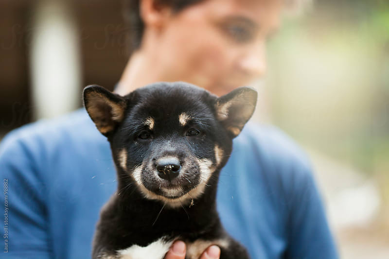 Woman holding in her hands a Shiba Inu puppy dog by Laura Stolfi for Stocksy United