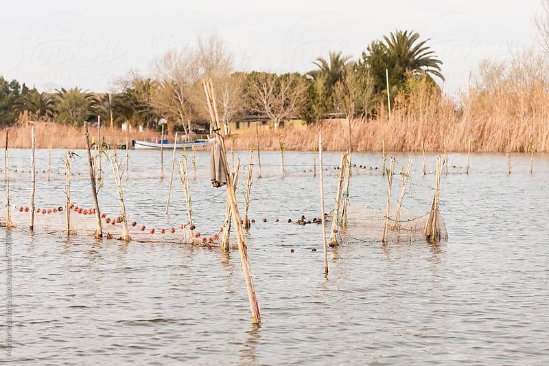 The Albufera Lagoon by Marilar Irastorza for Stocksy United