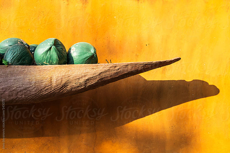 Green colored coconuts on wooden plate. by Jovo Jovanovic for Stocksy United