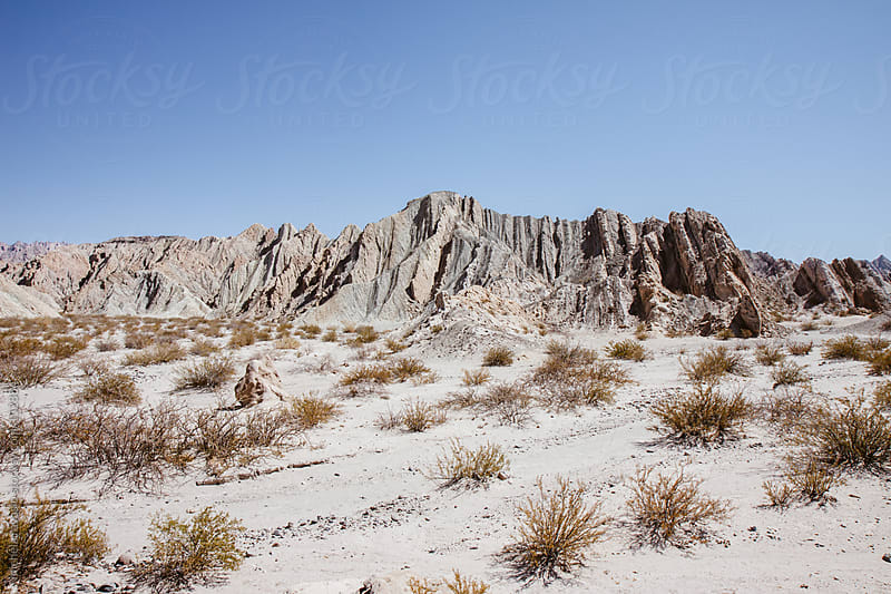 Desert landscape by michela ravasio for Stocksy United