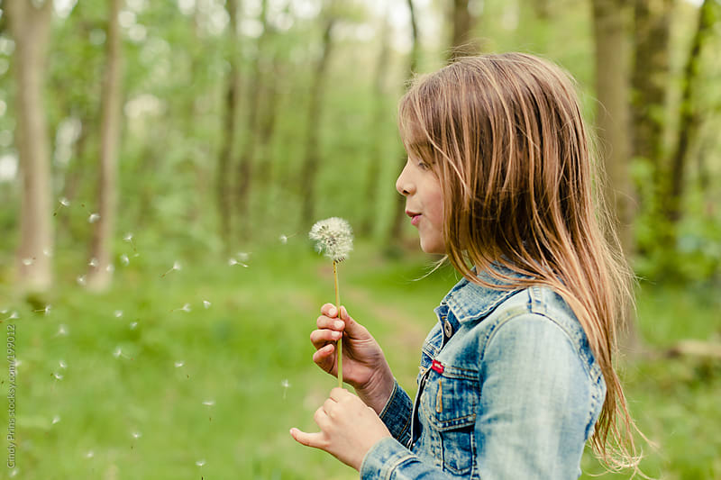 Little girl blowing a dandelion and making a wish by Cindy Prins for Stocksy United