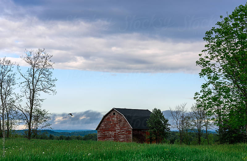 old red barn on a spring day by Deirdre Malfatto for Stocksy United
