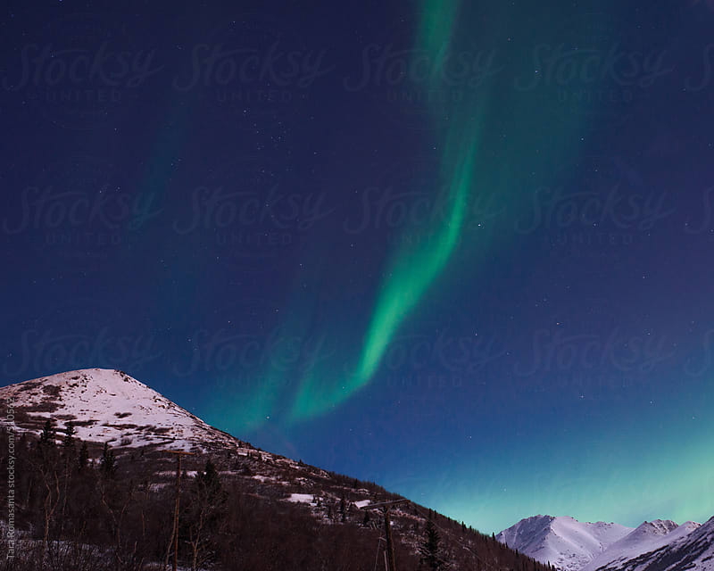 almost vertical green stripes of the northern lights by Tara Romasanta for Stocksy United