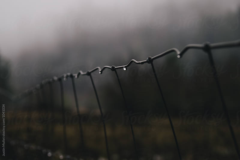 Water drop on cattle fence by Justin Mullet for Stocksy United