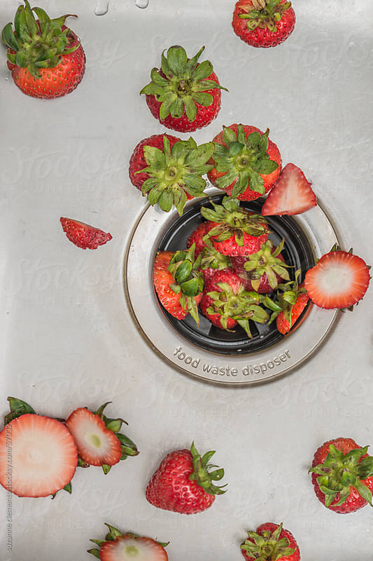 Fresh Cut Strawberry Tops In Garbage Disposal by suzanne clements for Stocksy United
