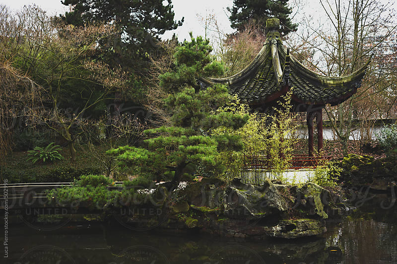 Classical Chinese garden in downtown Vancouver by Luca Pierro for Stocksy United