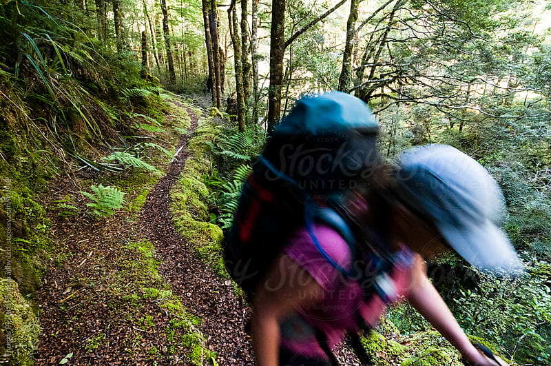 Woman walking the Wangapeka Track, Kahurangi National Park, New Zealand.  by Thomas Pickard for Stocksy United