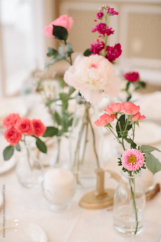 Pink Flowers by Sidney Morgan for Stocksy United