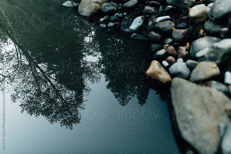 Trees relflection onto water by Isaiah & Taylor Photography for Stocksy United