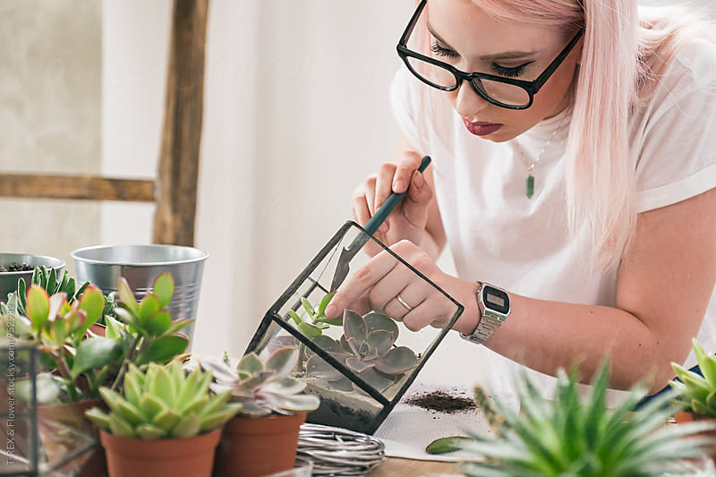 Young woman working with succulents by T-REX & Flower for Stocksy United