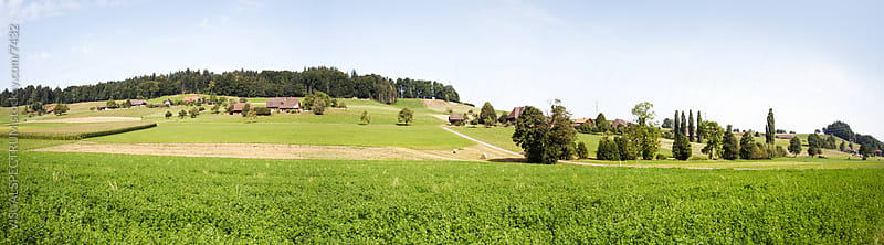 Green Swiss Farmland by Julien L. Balmer for Stocksy United