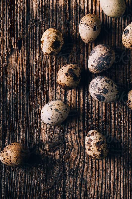 Quail Eggs by Lumina for Stocksy United